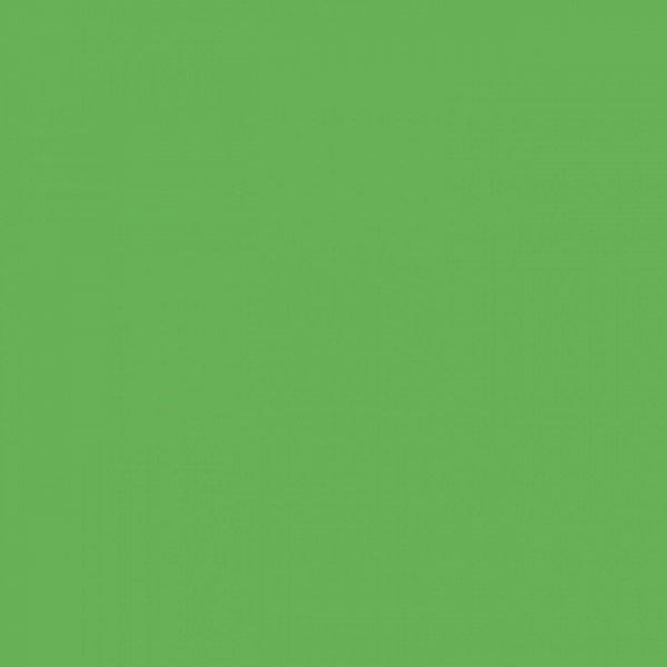 Canvas Uni - col. 012 lime